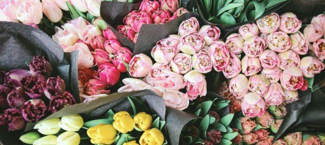 Blommor för alla tillfällen